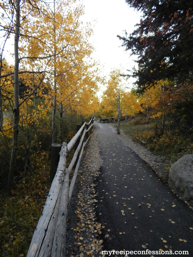 Payson Canyon Trail