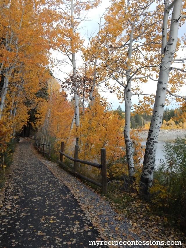Payson Lakes 10